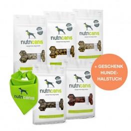 Großes Snackpaket + gratis Geschenk Hundehalstuch