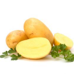 Sind Kartoffeln gesund für Hunde?